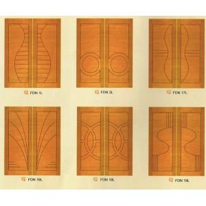 DESIGNER DOOR 5